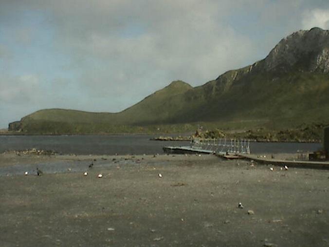 научно-исследовательская станция Bird Island. Антарктика