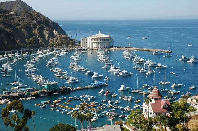 остров Санта Каталина, Калифорния (США)